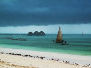 Dhow Boats In The Zanzibar Rain