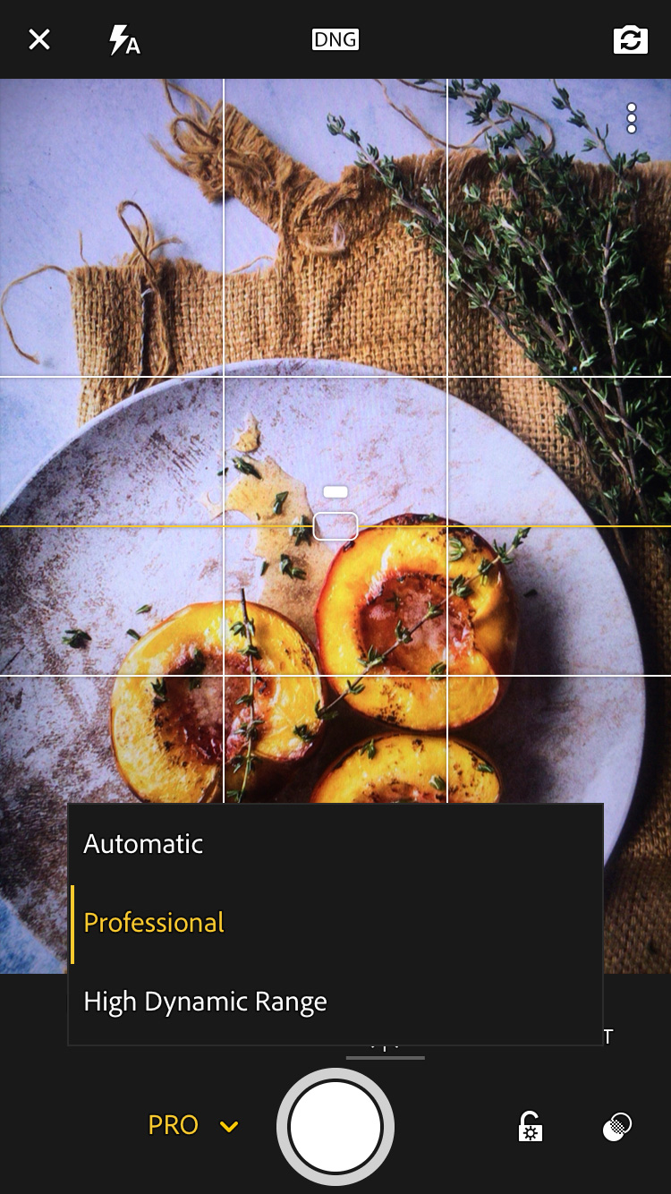 Lightroom Mobile App Changing The Camera Settings On smartphone To Professional